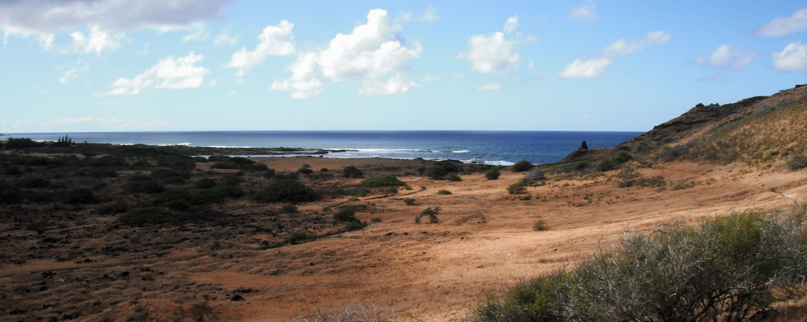 Dry ranch land on Hawai'i
