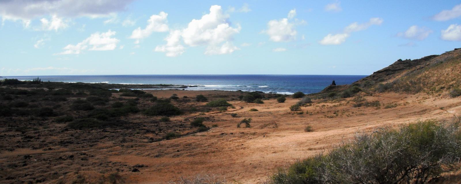 Dry ranch land on Hawai'i