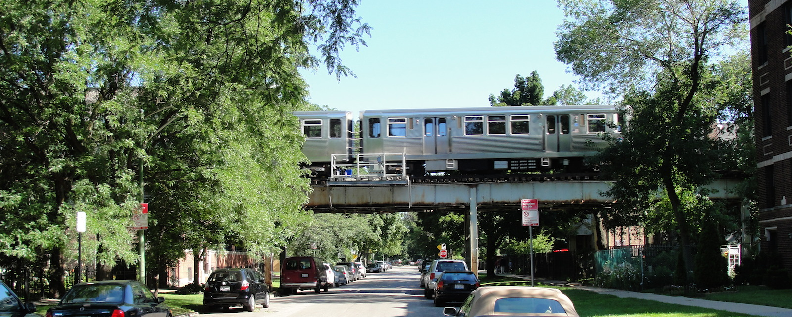 Residential trees and one of Chicago's elevated commuter trains