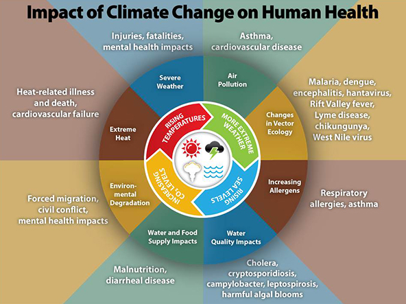 human effect on climate change Human-inflicted climate change is  the findings provide powerful and novel evidence for a significant human effect on earth's climate.
