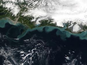 Glaciers, land, shoreline, and ocean in satellite view of Alaska