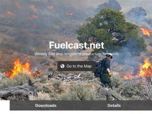 Screen capture from the FuelCast website
