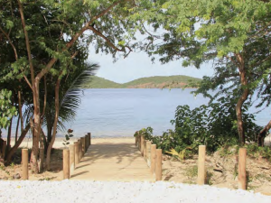 Wooden boardwalk leading to a beach with trees on either side and mountains in the distance.