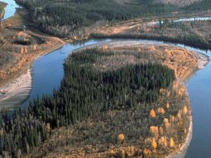 Meandering river in Yukon Flats National Wildlife Refuge