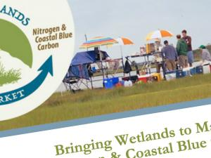 Screen capture from Bringing Wetlands to Market