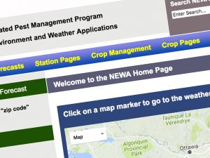 Screen capture of the NEWA home page