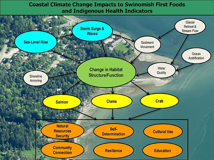 Swinomish Climate Change Conceptual Diagram