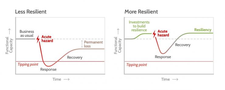 Graphs showing functional capacity over time for two levels of resilience