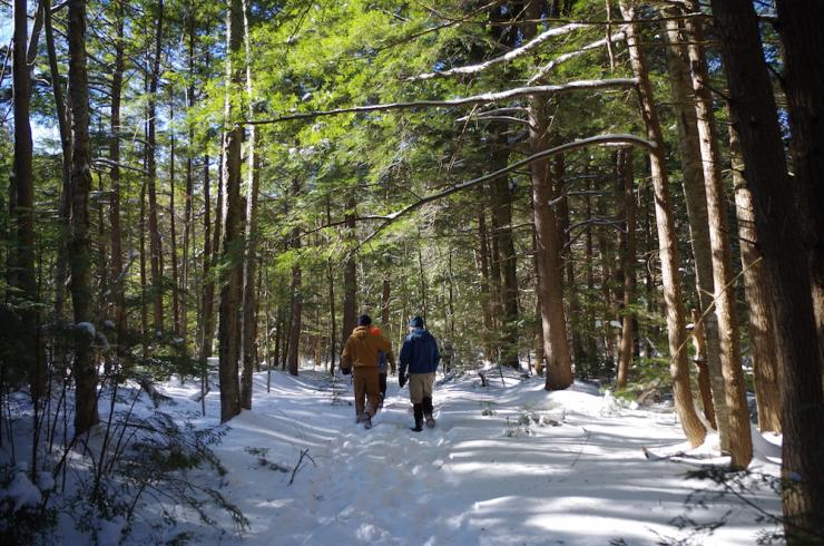 Photo of hikers in snowy woods