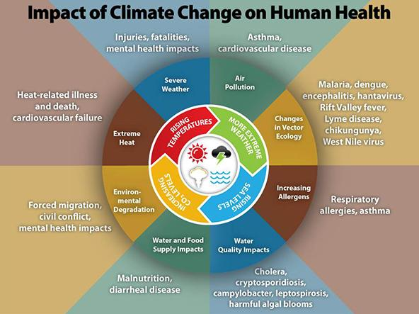 Illustration depicting the Impact of climate change on human health