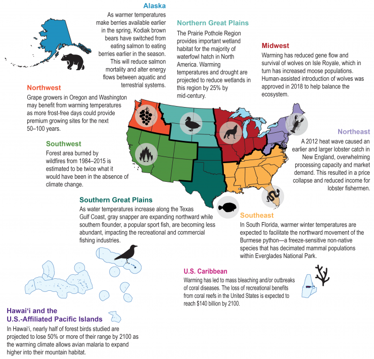 Regional Ecosystems Impacts