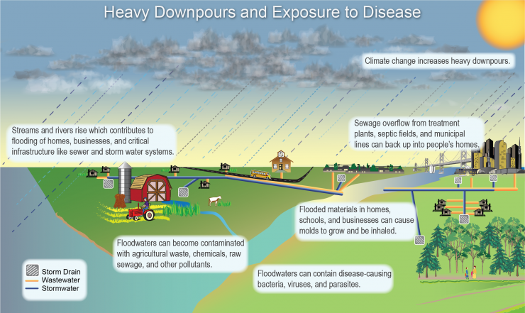 Illustration Depicting Factors Contribution to Human Exposure to Waterborne Diseases