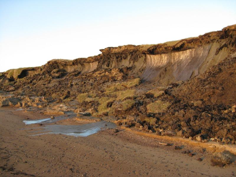 Photo of collapsed shoreline on Alaska's Bering Sea coast