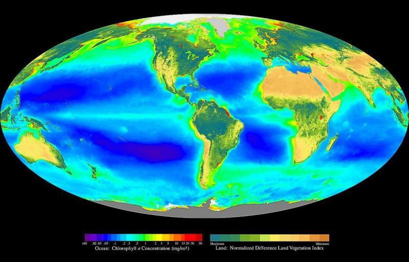 Map of Earth with high productivity in high latitudes, off continents, and along parts of the equator.