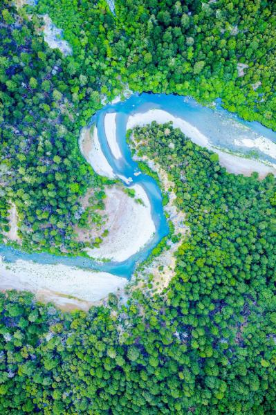 Aerial view of a blue winding river among straight, tall trees