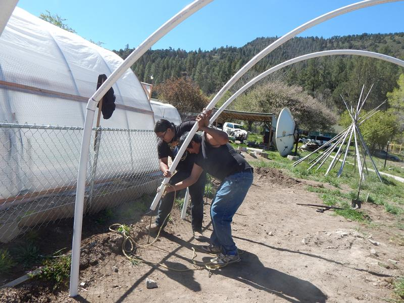 Constructing a hoop house to protect produce from climate extremes