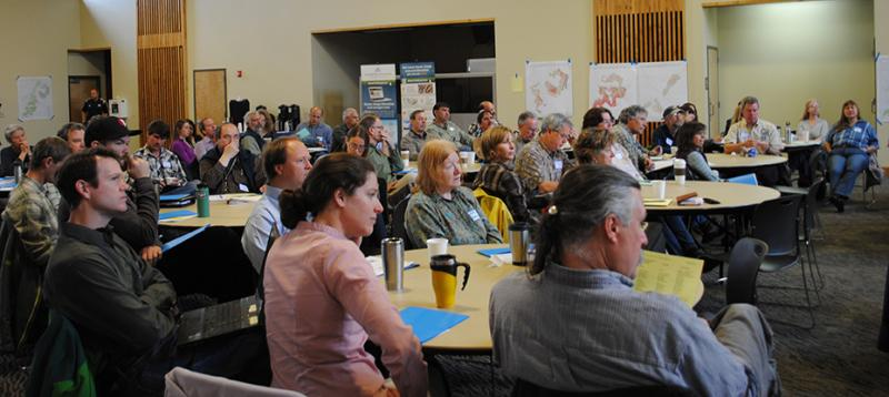 Photo of participants during the Blue Mountains Adaptation Partnership Workshop