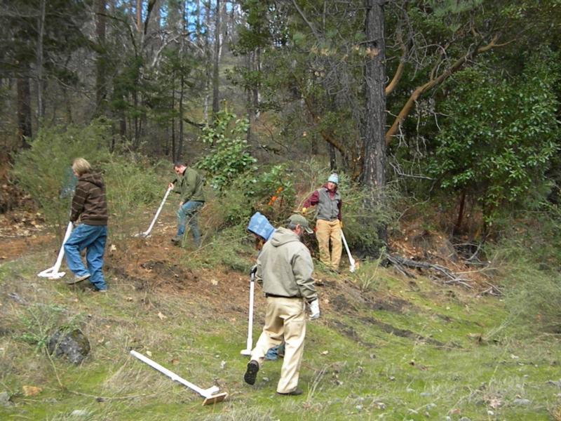 Photo of people eradicating weeds