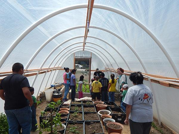 Families in the hoop house