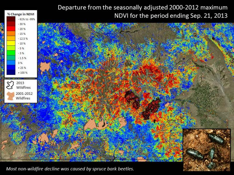 Drought, beetles and fire in Colorado [presentation slide]
