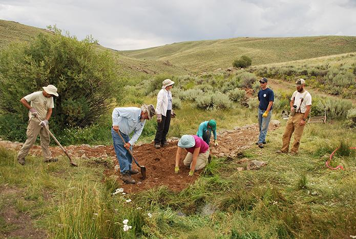 Photo of participants working to restore sagebrush habitat in Colorado