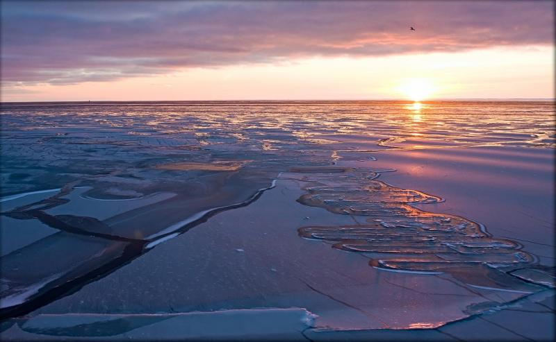 Photo of floating sea ice the sun low on the horizon