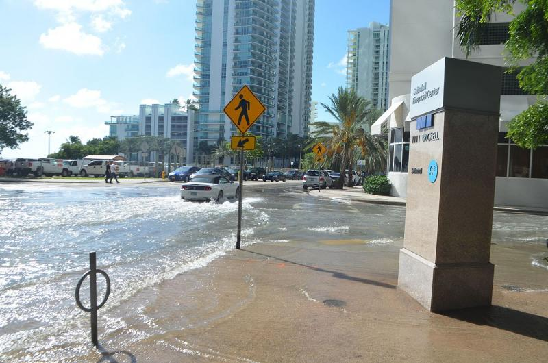 Car driving through ocean water in downtown Miami, Florida