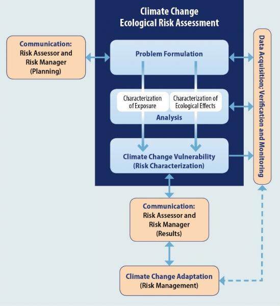 Flowchart showing steps for a risk assessment