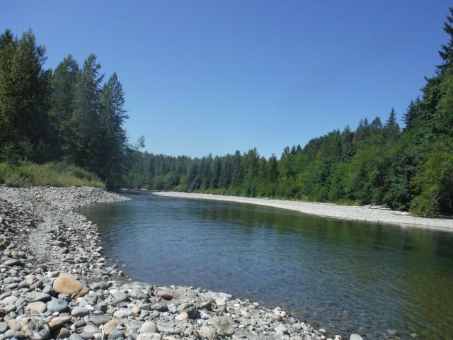 South Fork Nooksack River