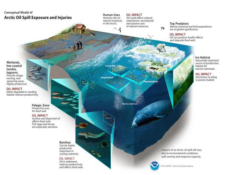 Cut-away diagram showing oil spill issues at various ocean depths