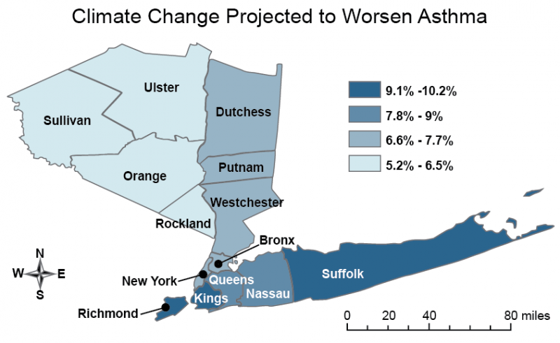 Map Showing  Estimated Increase in Ozone-Related Emergency Room Visits for Children in New York