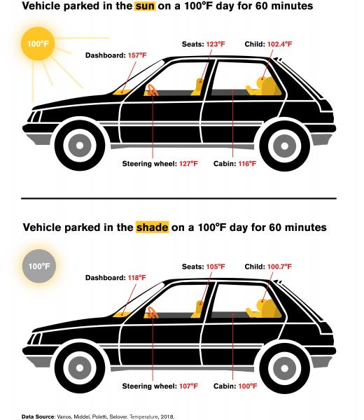 Vehicular heat stroke infographic
