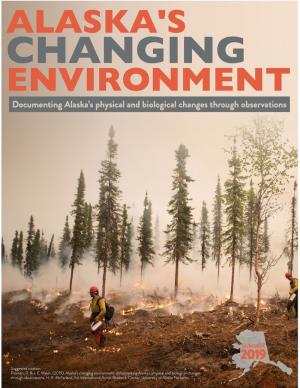 Cover of report with smoke and wildfire