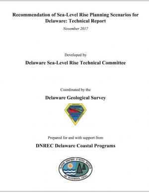screenshot of report cover