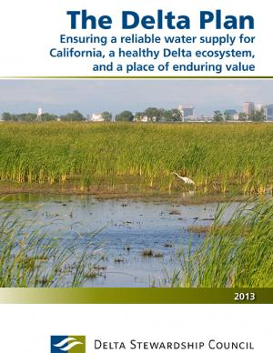 Cover of The Delta Plan