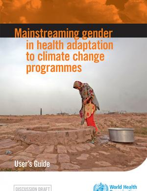 Cover of the Mainstreaming Gender report