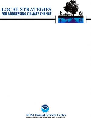 Cover of the Local Strategies report
