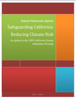 Cover of the Safeguarding California report