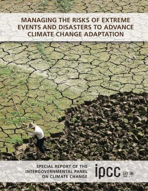 Cover of the Managing the Risks of Extreme Events and Disasters report