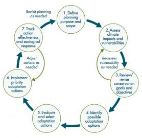 The Climate-Smart Conservation Cycle