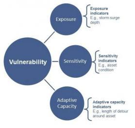 Diagram showing components of vulnerability
