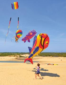 Young girl chasing a colorful fish-shaped kite on a beach