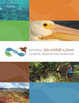 Cover of the National Fish, Wildlife, and Plants Climate Adaptation Strategy report