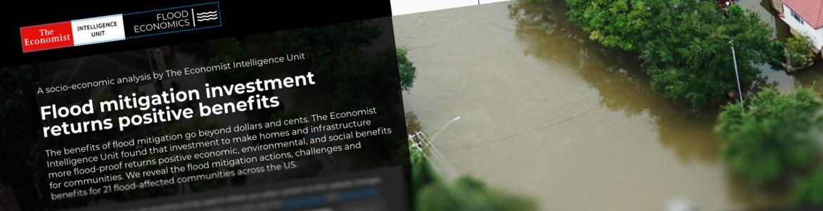 Screen capture from the Flood Economics website