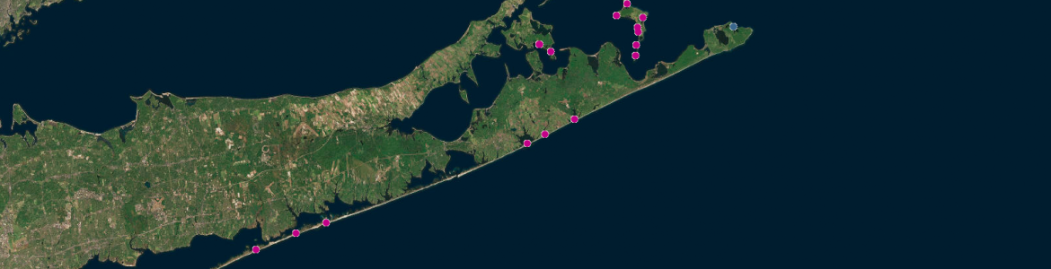Screen capture from the Beach and Tidal Inlet Habitat Inventories